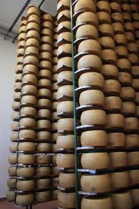 Racks of drying Parmesan.