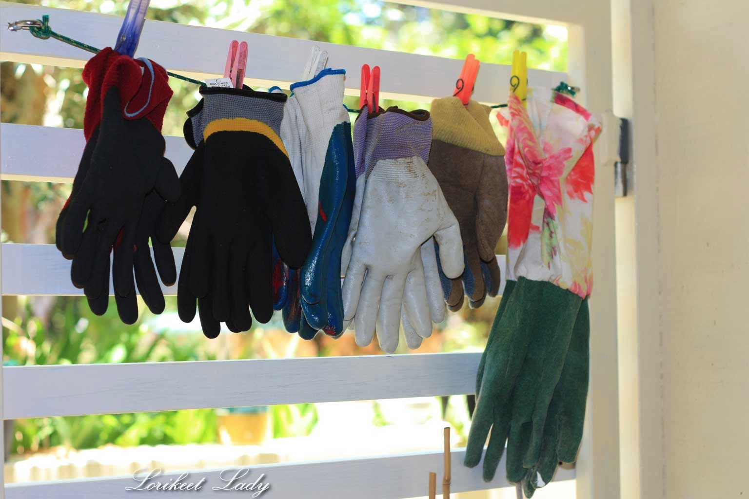 glove-storage
