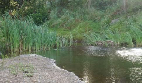 web_creek-vista