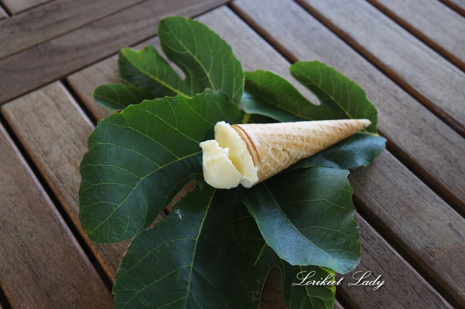 ww_fig-leaf-ice-cream2